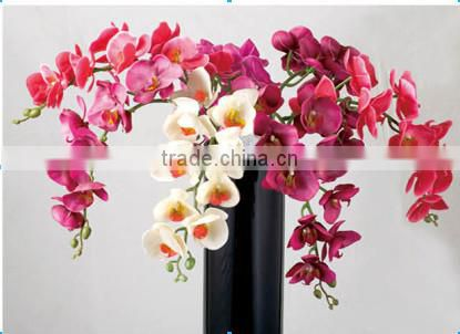 Colorful mini real touch artificial orchid flower