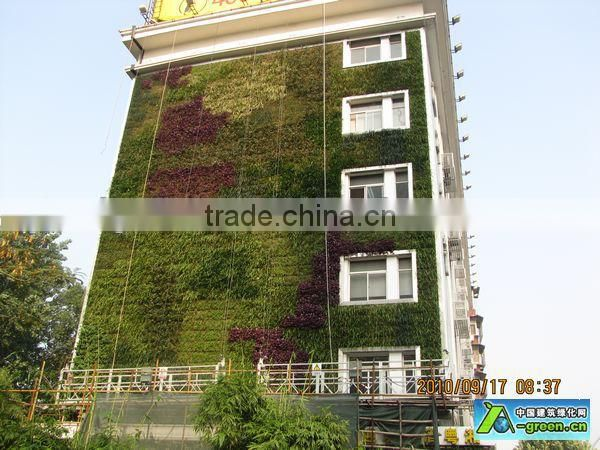 subtropical plant wall factory UV-proof china flor artificial