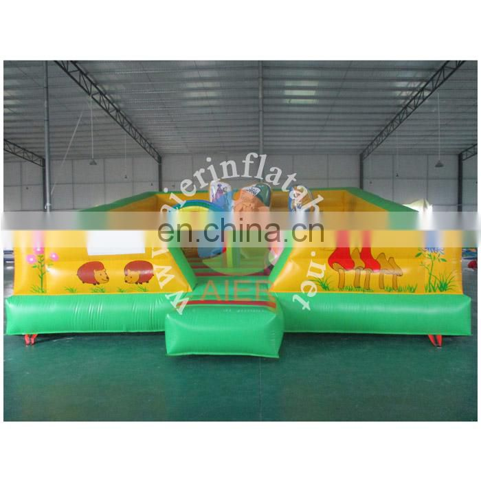Alice inflatable new funcity