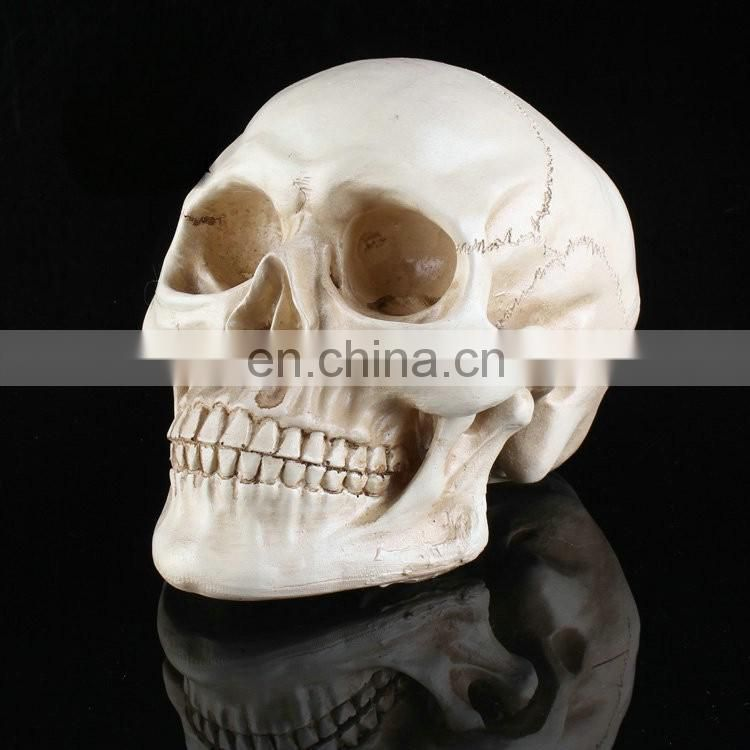 halloween party club bar scary gift toy skull head decoration human skull gothic ornament
