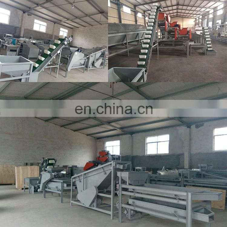 Almond nuts kernels machine Almond cracking machine Almond shelling machine
