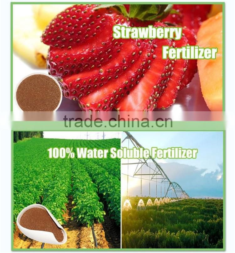 Huminrich Shenyang Plant Source Drip Irrigation Fulvic Acid With Npk Strawberry Fertilizer