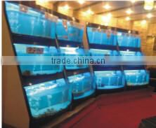 ornamental fish Aquarium rack