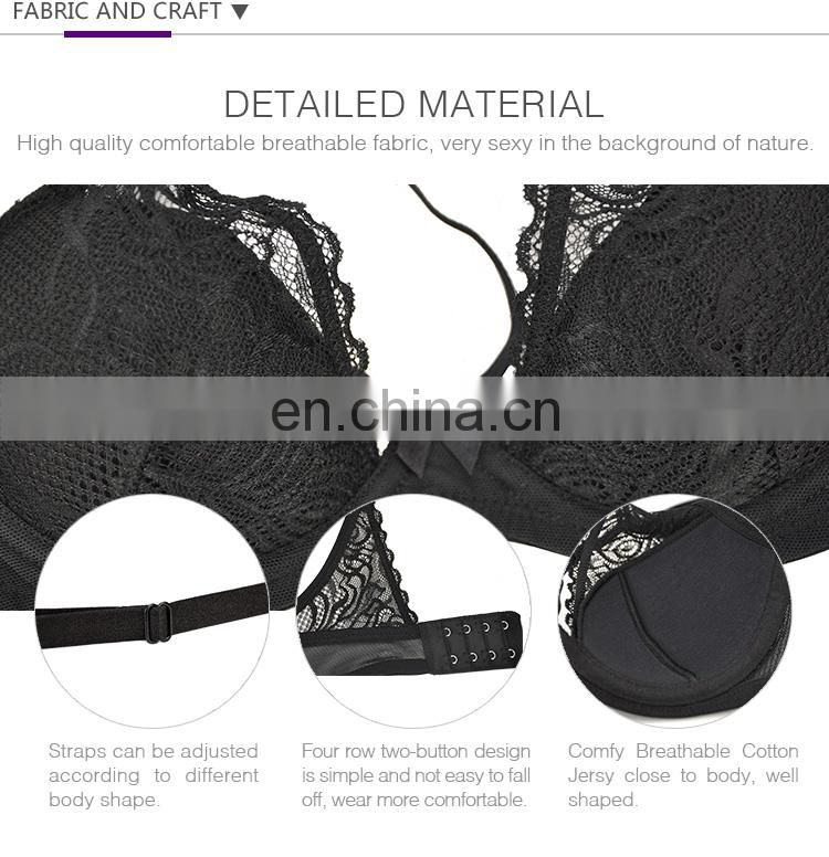 Qualified Customized LOGO Ladies Underwear Sexy Bra and Panty New Design