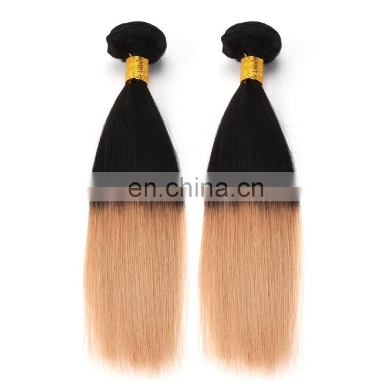 Express ali factory price ombre european virgin 100 human hair