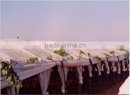 LLDPE film tarps for pacakge and greenhouse grape tarpaulin rain cover with uv resistance