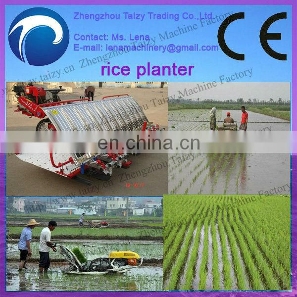 paddy planter/rice planter machine/rice seeds planting machines 0086-13837162172