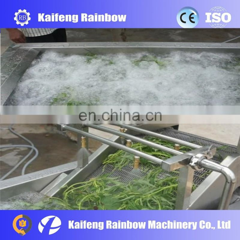 Professional energy saving vegetable washing machine with easy operation