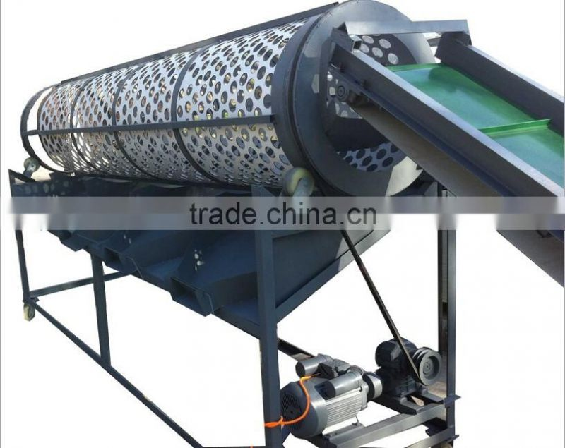 Garlic Separating Peeling Machine Processing Machine Production Line