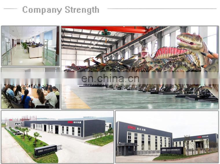 amusement rides manufacturer