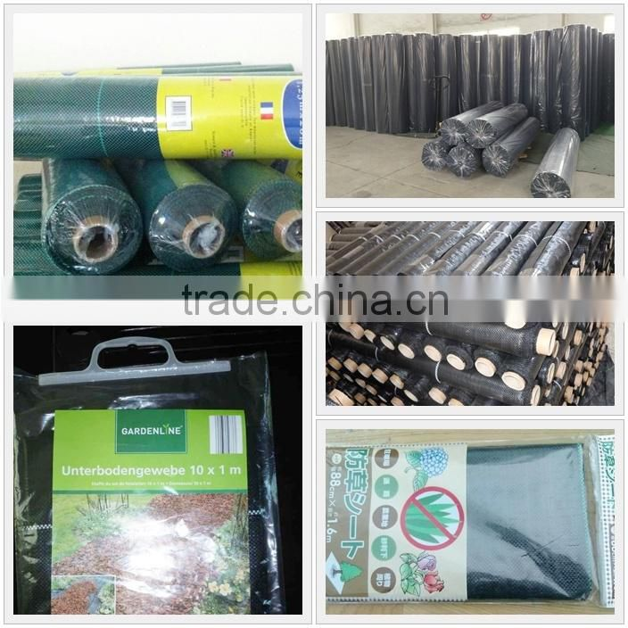 PP Ground cover, PP weed mat,PP weed control mat