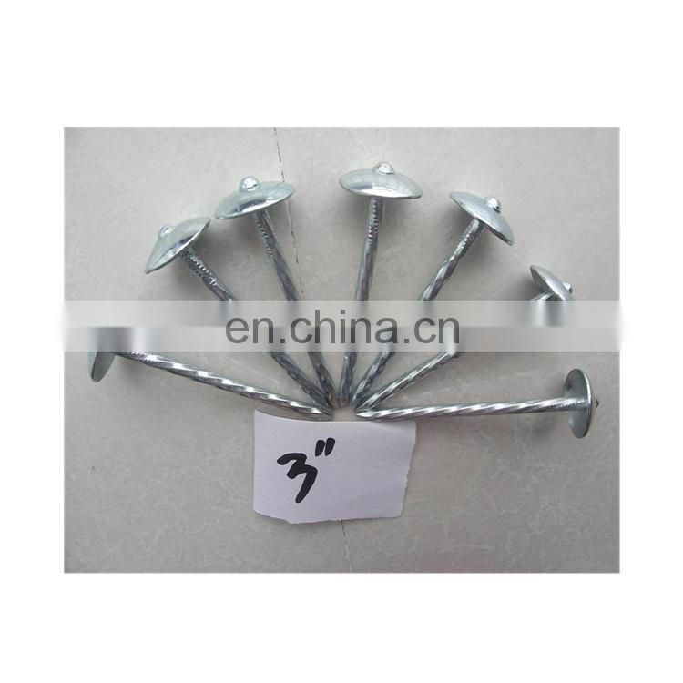 Common Wire Umbrella Head Roofing Nails