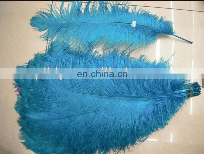 hot selling!!! Chrismas for sale 55-60cm ostrich feather from south Africa