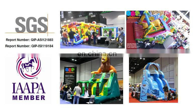 commercial inflatable slide in multi color with double lane