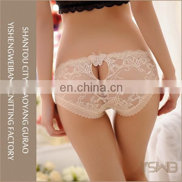 Oem hot sexy back lace butterfly mesh panty womens transparent panties