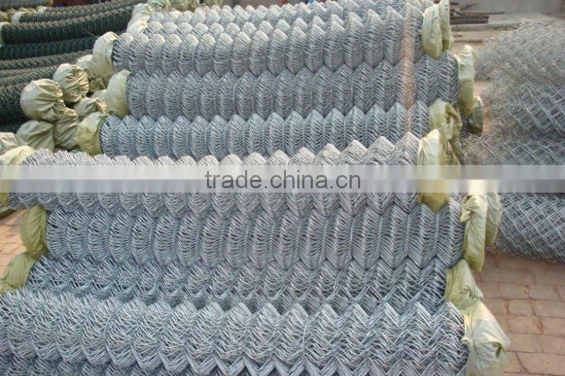 Hex wire mesh&plastic coated chain link fence