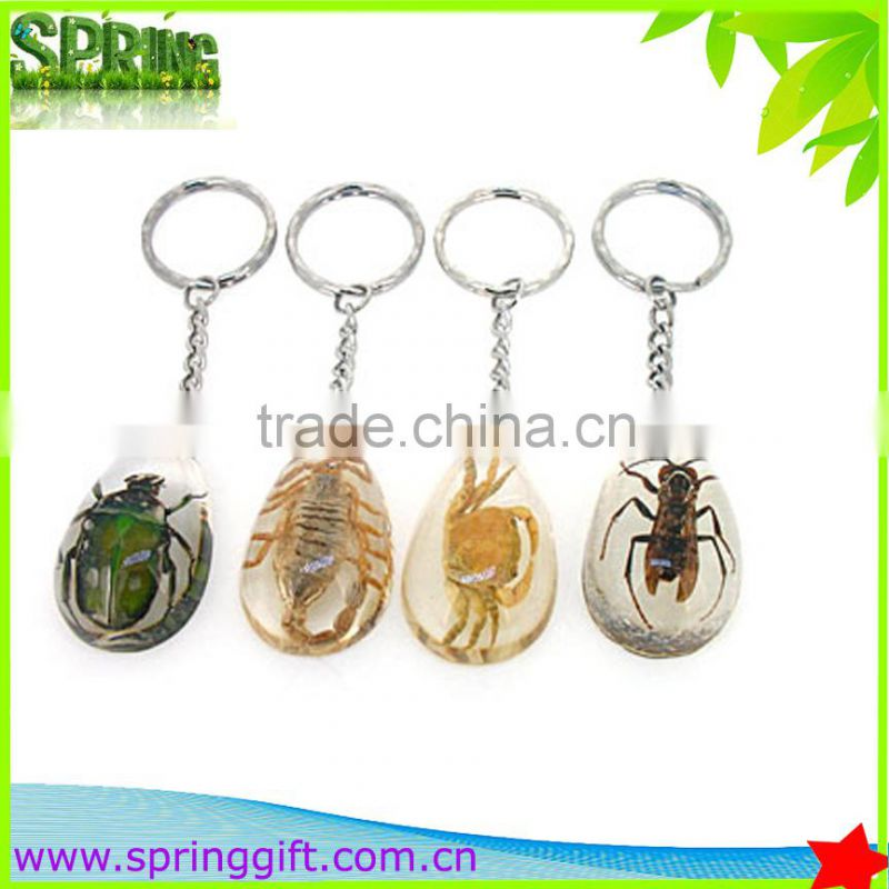 Real insects key ring, animial Specimen sample key ring , butterflies, sea life amber fashion jewelry key ring