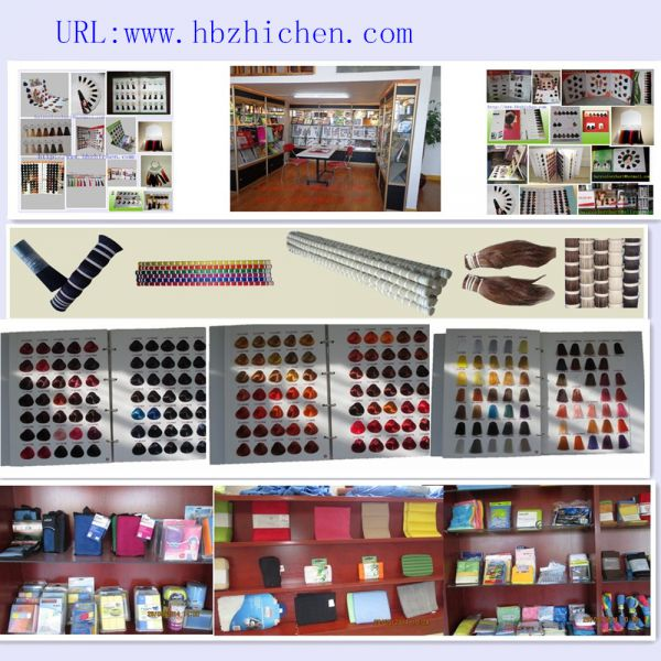 HEBEI ZHICHEN TRADING CO., LTD.