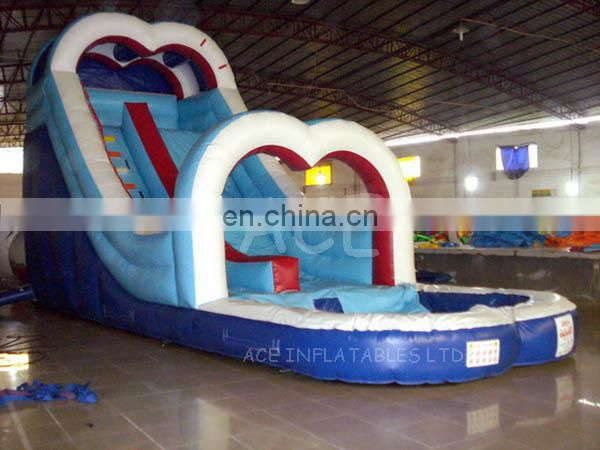 Hot sale Inflatable Water Slide with pool for kids