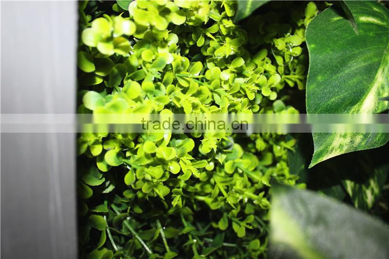 stickers home garden deco 200*200 cm indoor or outdoor artificial corner succulent green climbing plant wall Ezwq10 1010