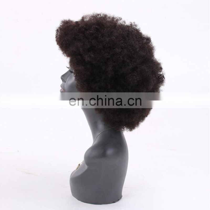 Afro kinky human hair lace front wigs woman hair wig