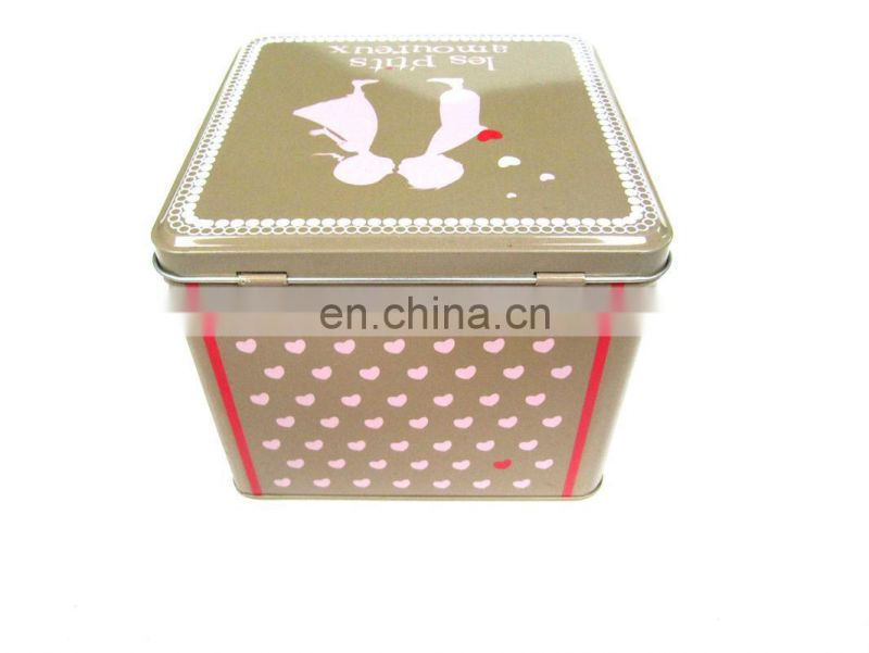 Hot sale square hinged tin can with door
