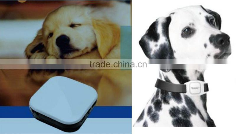 smallest animal gps tracker gps pets tracking device gps tracking chip for dogs