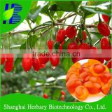 2016 Hot slae wholesale nutritional supplement goji berry oil softgels