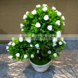 Home Decoration Use NEW Mini Novel Ceramic Porcelain Bonsai Grass Doll Hair Plant Head Planter Gift