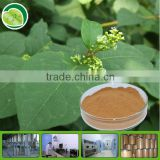 extract powder for resveratrol capsule