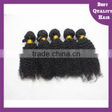 wholesale 5A quality Mink Brazilian hair bundles afro kinky culy human hair clip in hair extensions