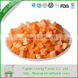 No preservative Preservation Process Natual Flavor Freeze-dried Carrot Dice