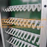Poultry Farm Full Automatic H Frame Layer Chicken Cage System Used in Chicken House