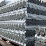 Hot Dipped and Pre-Galvanized Steel Pipe Supplier