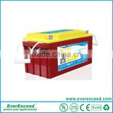 EverExceed sealed valve regulated lead acid battery with long life time TM-12100