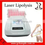 2013 New Arrival! Laser Lipolysis Slimming Machine for Weight Loss Beauty Machine BD-BZ013