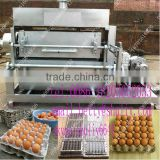 pulp moulding egg/fruit tray machine/ Recycling Waste Paper Egg Tray Machine With CE Approved