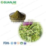 Milk Thistle Extract /Top Quality And Low Price Milk Thistle Seed Extract /Milk Thistle Powder