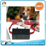 Hot Sale Pet Dog Training Alarm Anti Bark Electric Shock Collar