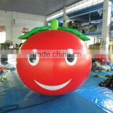 inflatable best selling balloon