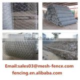 Favourable Price PVC/Galvanized Normal / Reverse Twist Hexagonal Chicken Wire Mesh(Factory Price)