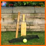 Garden game baseball tennis ball cricket bat