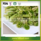 Freeze Dried Broccoli Powder from China