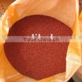 New season's annatto seeds red annatto grain annatto seeds oil /Achiote/Achote/Achiote/Achu seeds/grain supply at low price