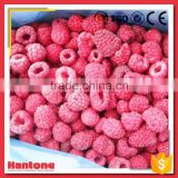 Frozen Whole Raspberry Price Wholesale