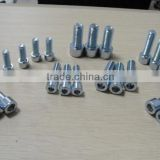 High quality sus 316 decorative carriage bolts