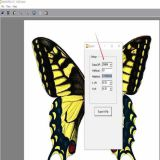 latest fly eye 3d lenticular software fly eye lens sheet printing software-butterfly 360 degree 3d and animation effect