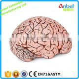 Emergency Inflatable Brain Lifelike Blow Up Vinyl Funny Prank Inflatable Brain Model for Display