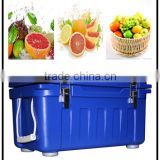SCC removable fruits and vegetables cold storage with different size,used cold storage,potato cold storage