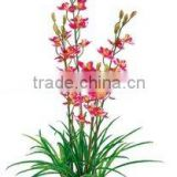 artificial decorative orchid flower/fake flower/plastic orchid flowers